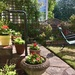 More Garden..