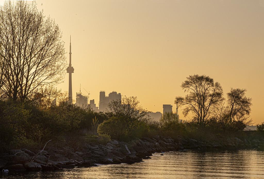 Toronto Misty Morning Sunrise by pdulis