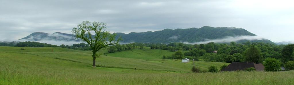 Fog Along the Mountain by calm