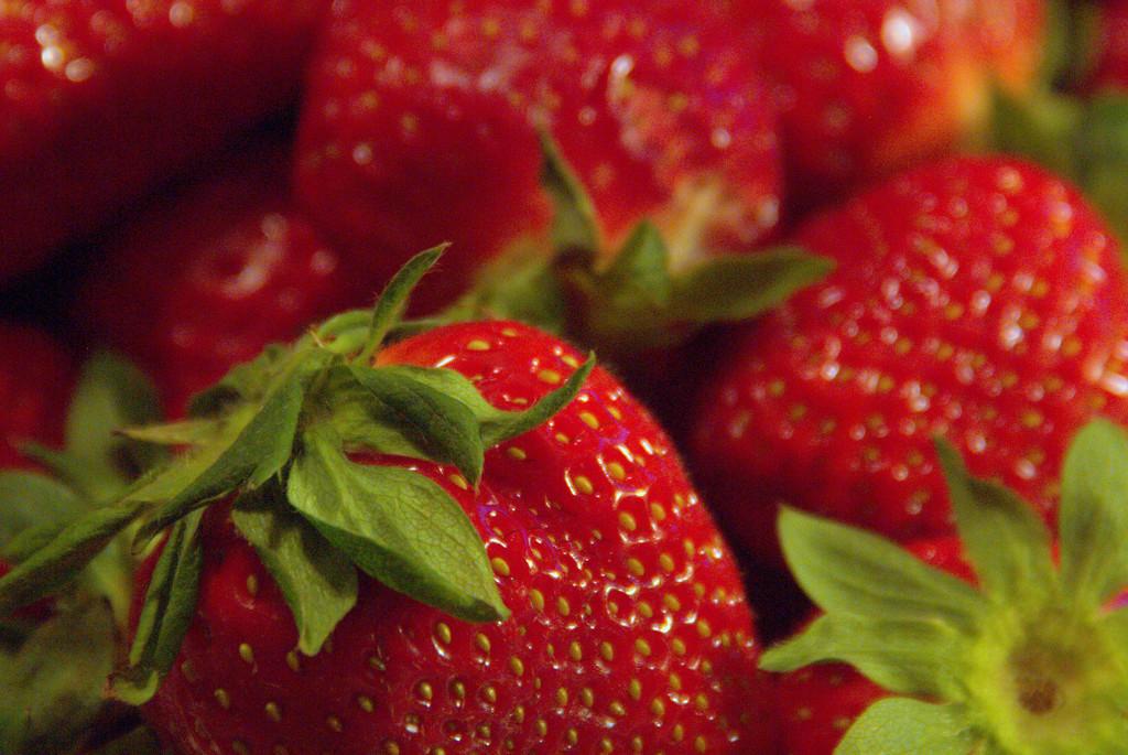 Strawberry Season by calm