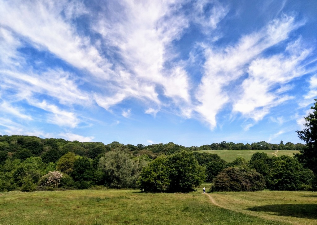 View back ascending Pole Hill by boxplayer