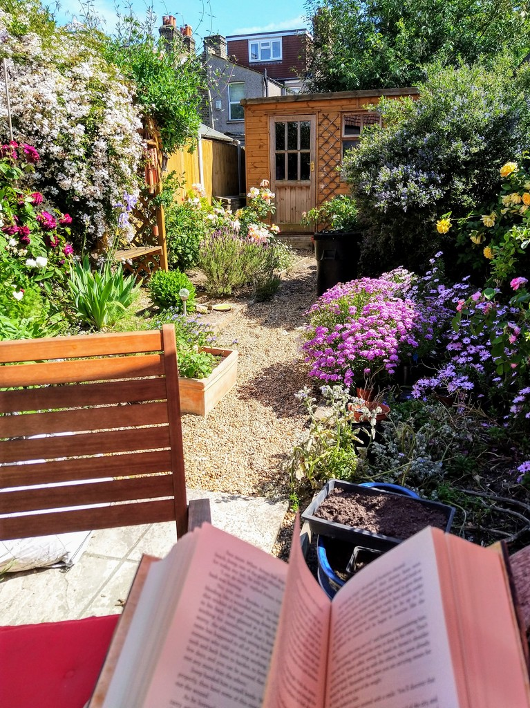 Reading in the garden by boxplayer