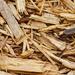 Cypress mulch by larrysphotos