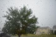 23rd May 2020 - It's raining again!