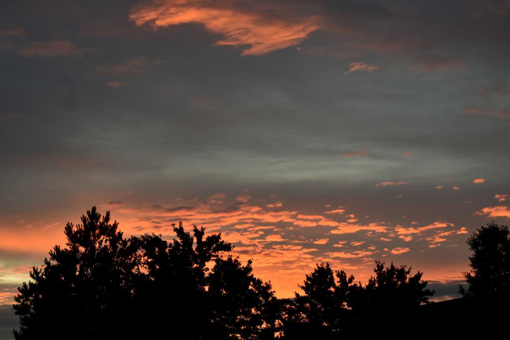 Sunset by homeschoolmom
