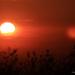 Y11 0524 Sunset