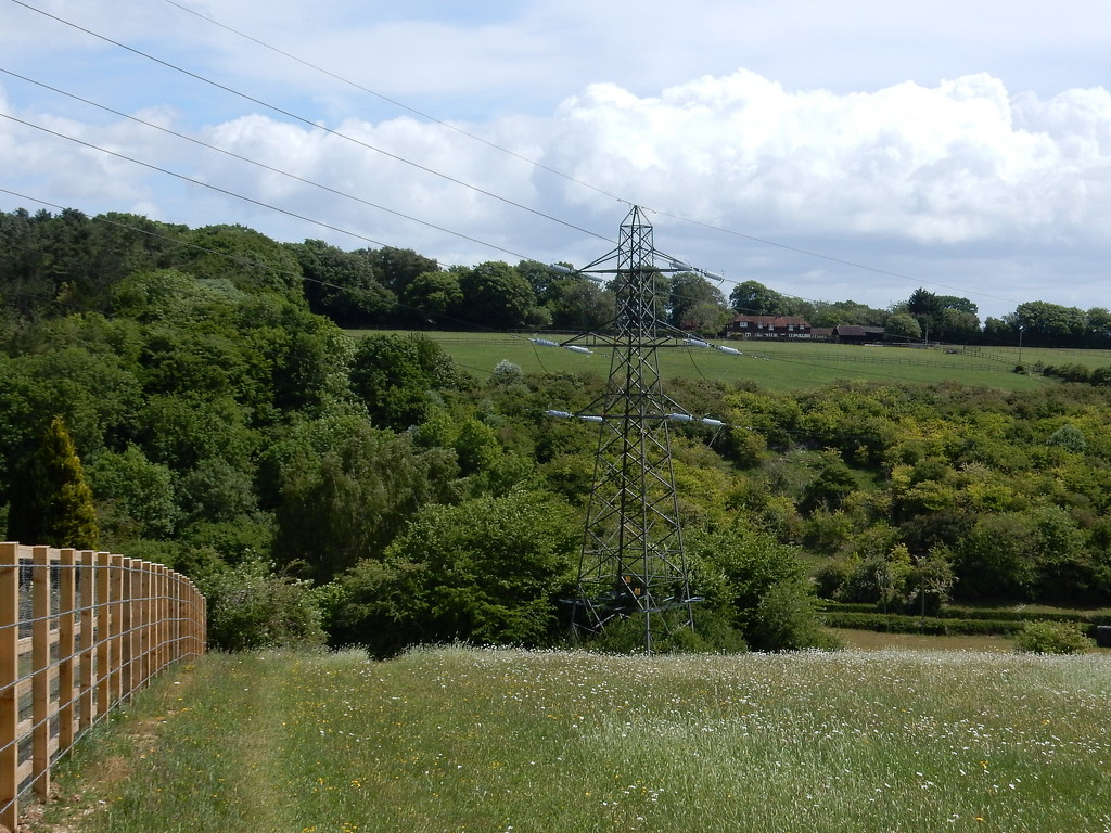 Down From Spring Coppice Farm - 8.8 Miles by bulldog