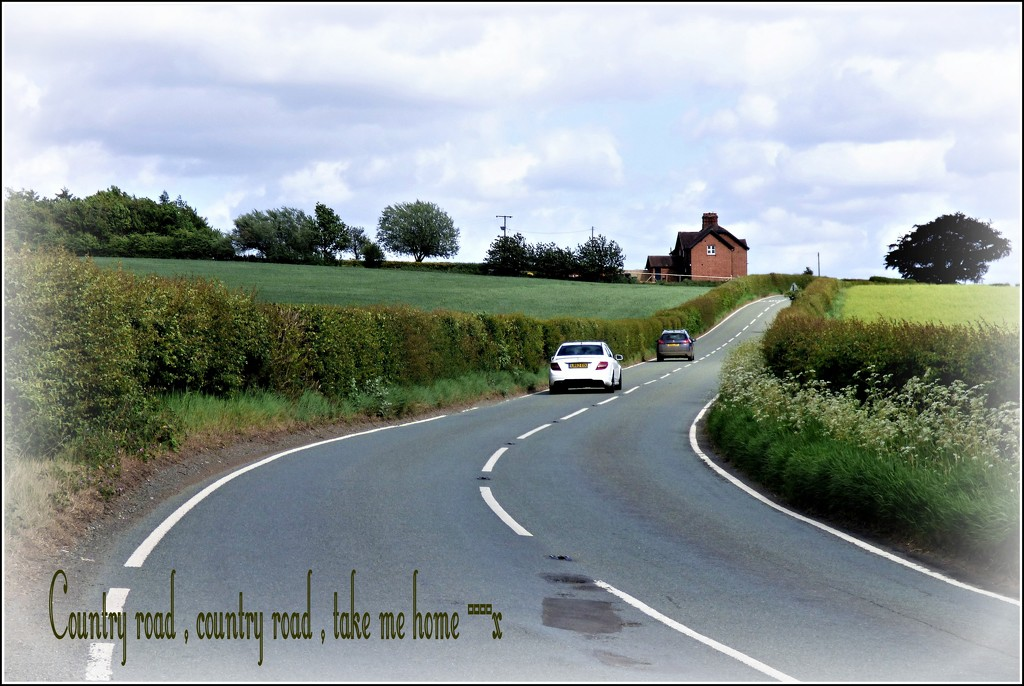 Country road  by beryl