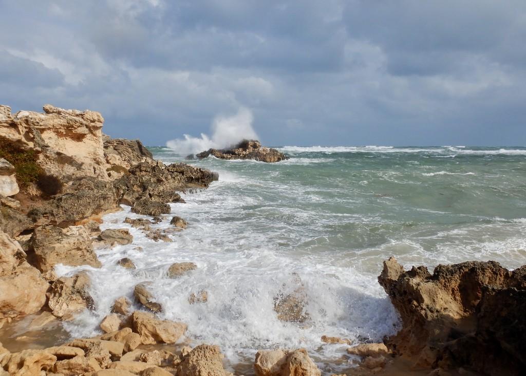The Ocean Was Even Rougher Today DSCN2933 by merrelyn