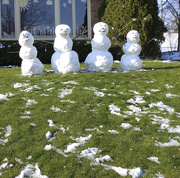 18th Apr 2020 - Spring snowmen 4-18-20