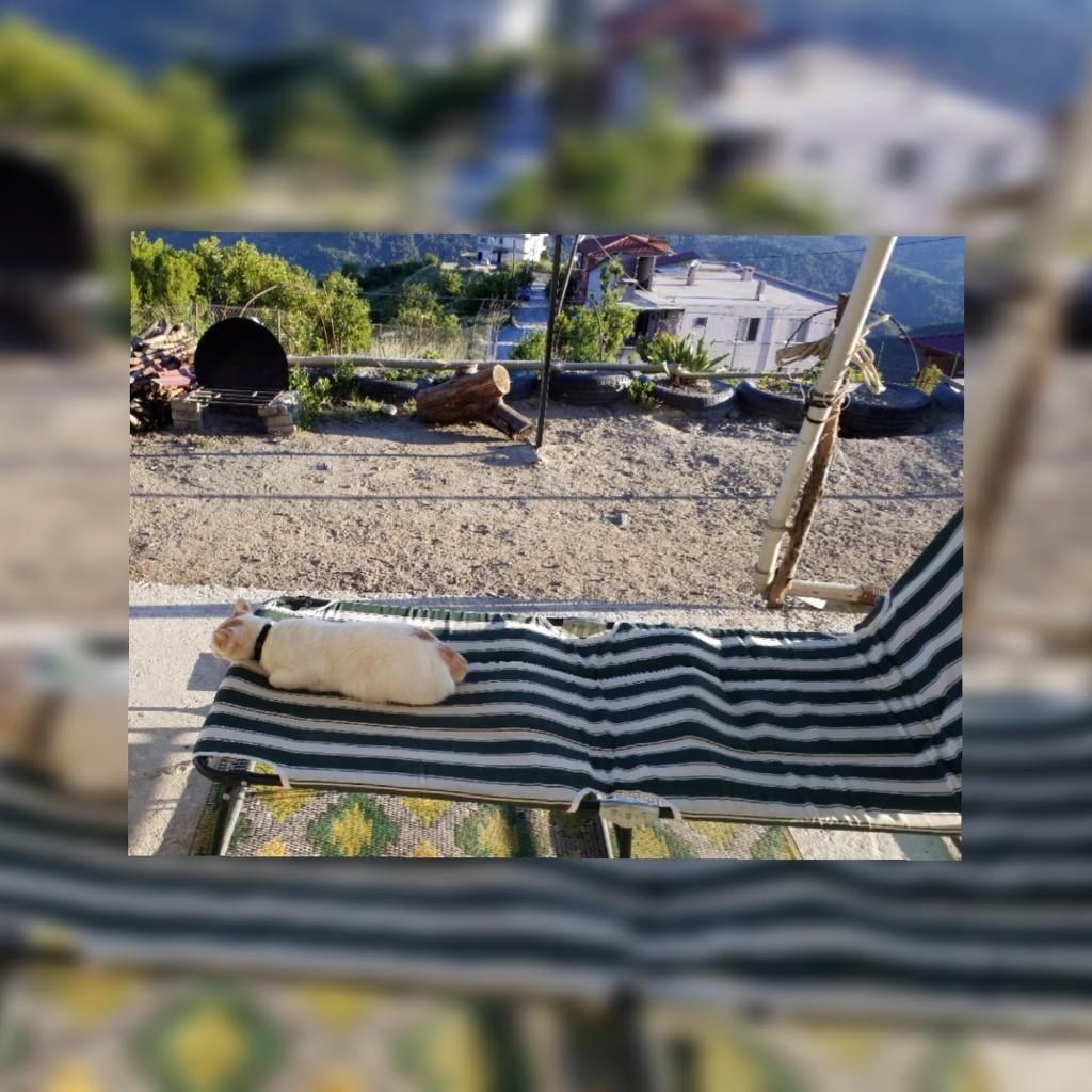 Sun bathing by angelunderwater