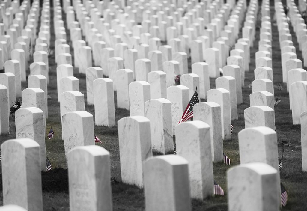 Patriots by kvphoto
