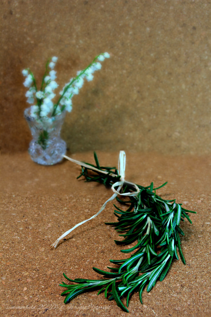 rosemary for remembrance by summerfield