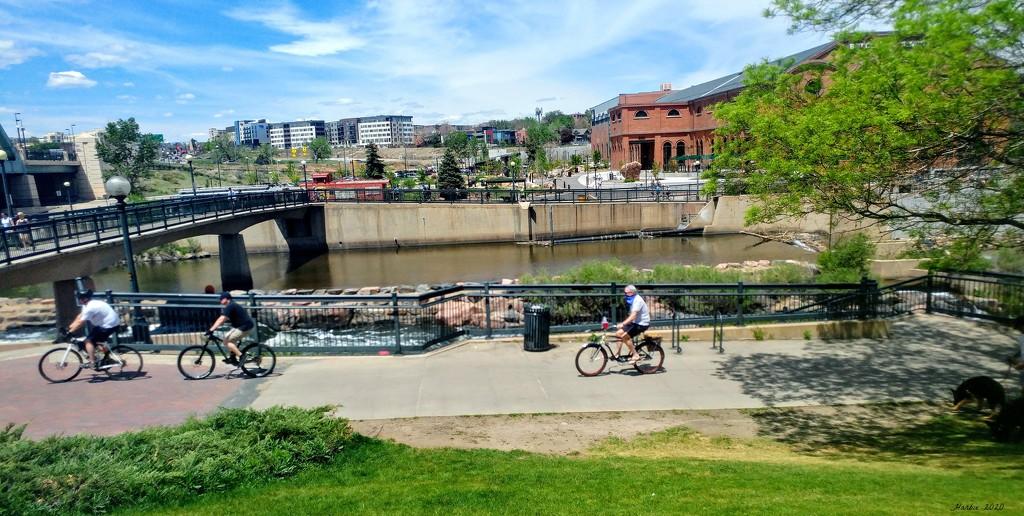 Biking in the City by harbie