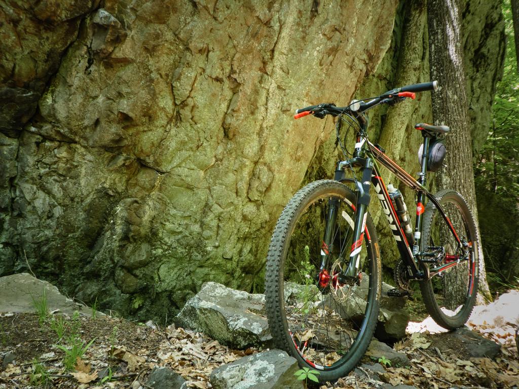 Finally, some good mountain biking weather. by batfish