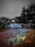 26th May 2020 - Rainy Tuesday