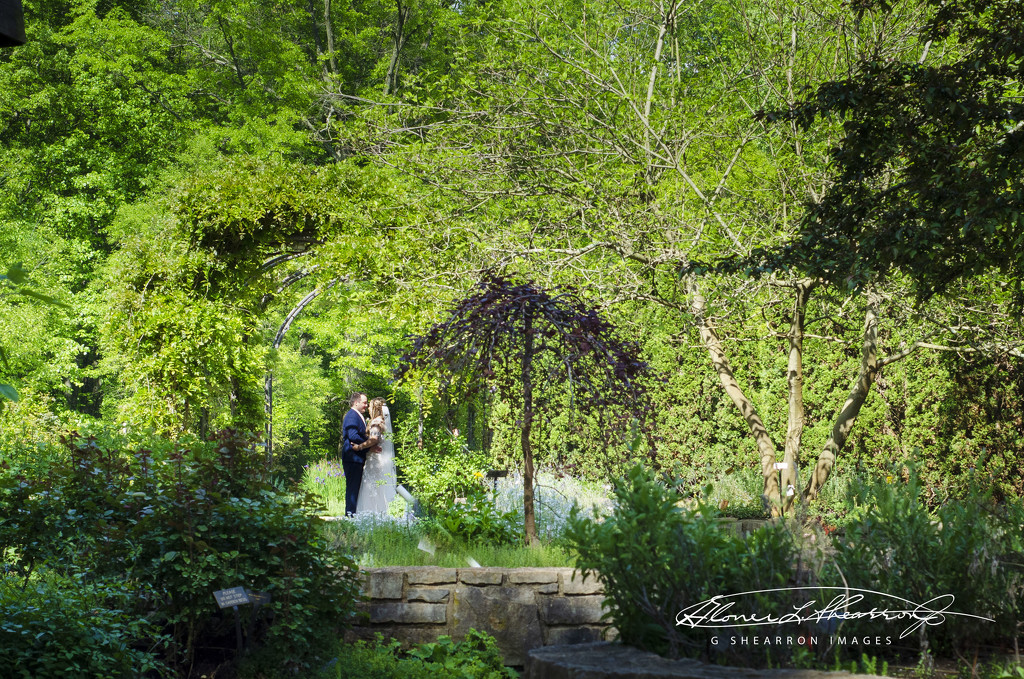 Love Match at Inniswood by ggshearron