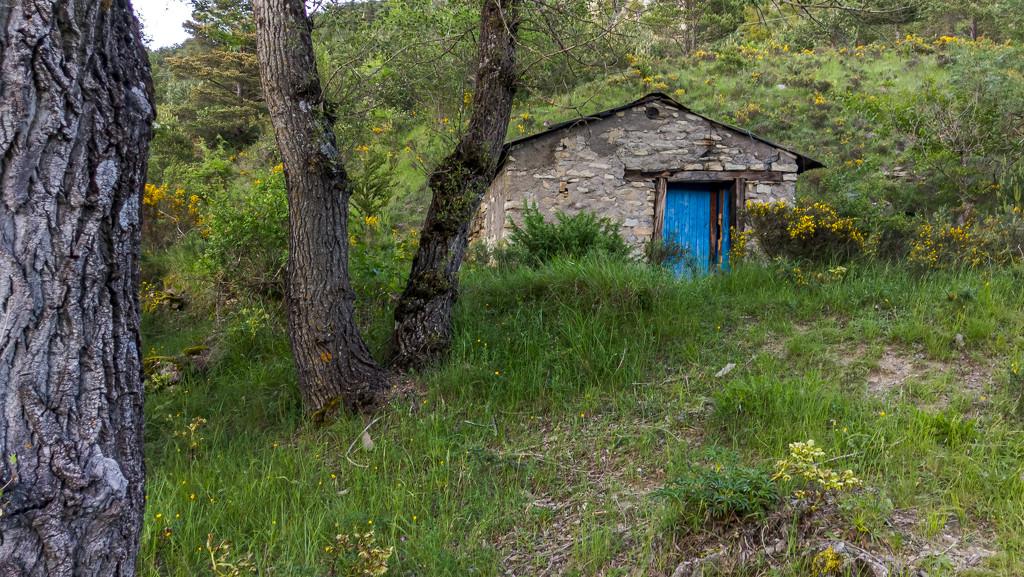 Camino de Santiago by petaqui