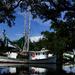 Along Bayou la Loutre