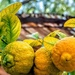 Rough skinned Lemons