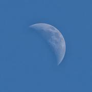29th May 2020 - Blue Moon