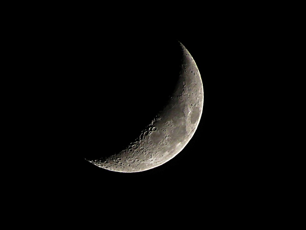Simply the Moon by olivetreeann