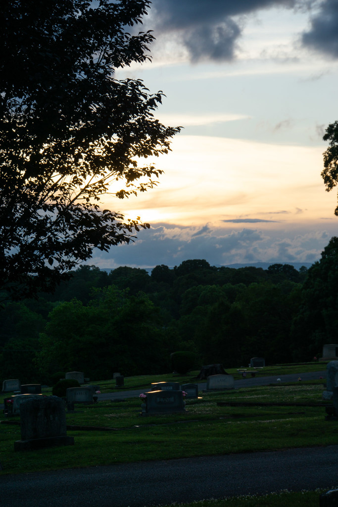 Evening at Forest Hill by randystreat