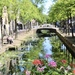 Sunny Delft
