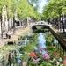 Sunny Delft by momamo