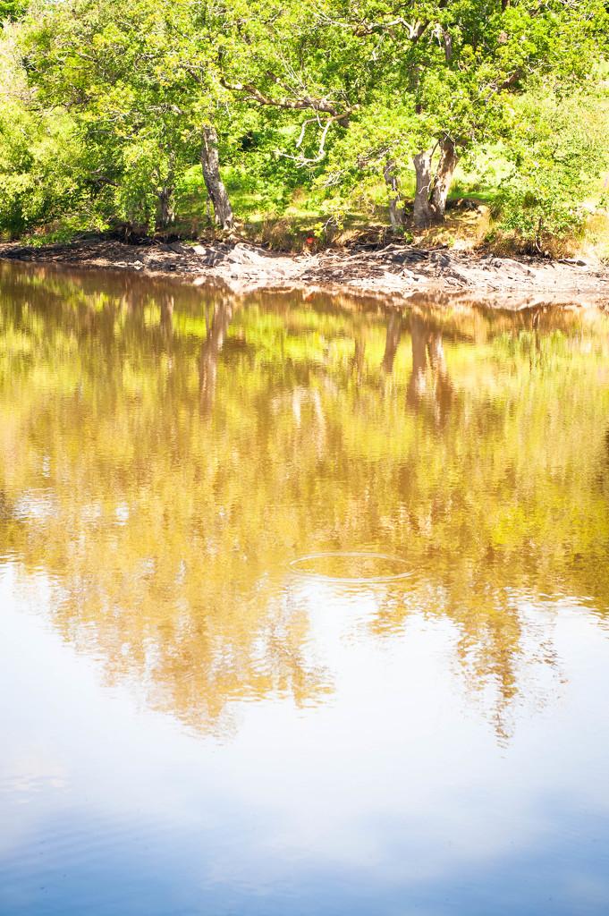 Reservoir by overalvandaan