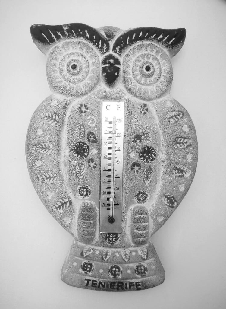 Owl Thermometer ~ b&w by plainjaneandnononsense