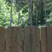 Half fence, half woods