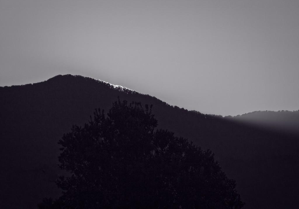 Last light by kiwinanna