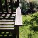 29th May bench