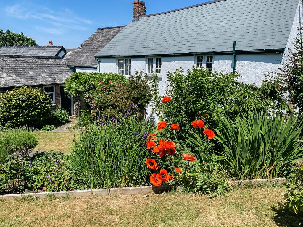 Cottage garden by pamknowler