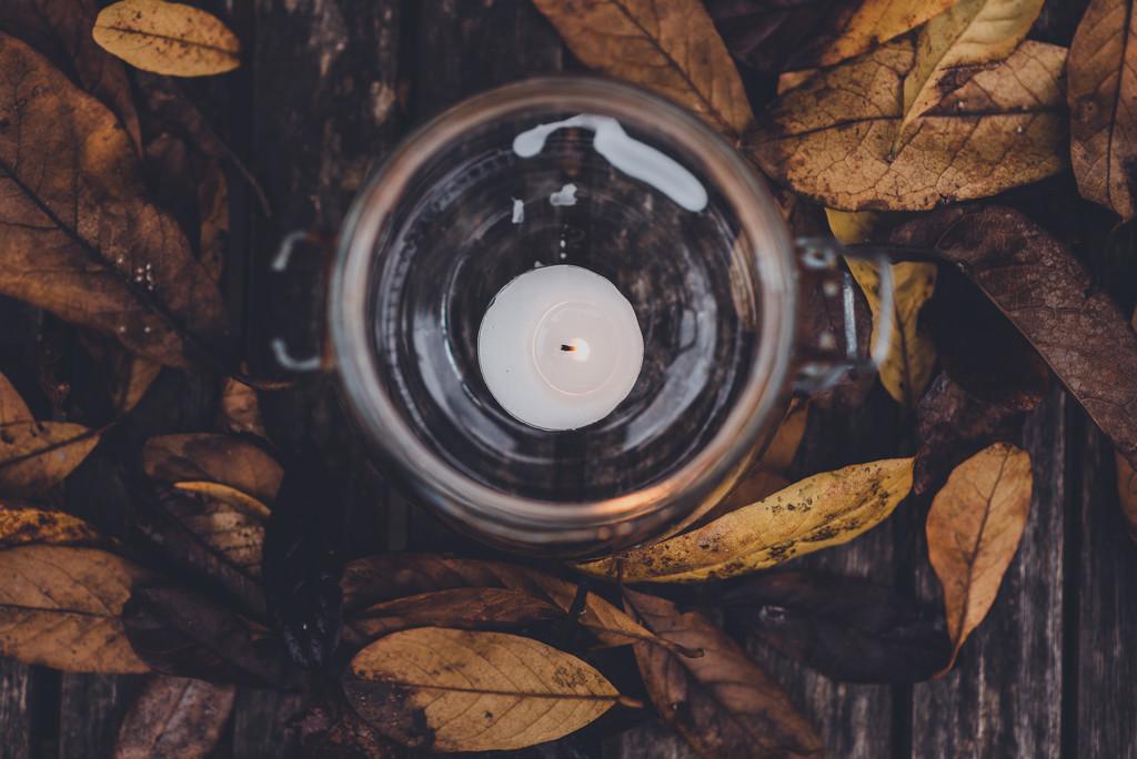 Autumn  by brigette
