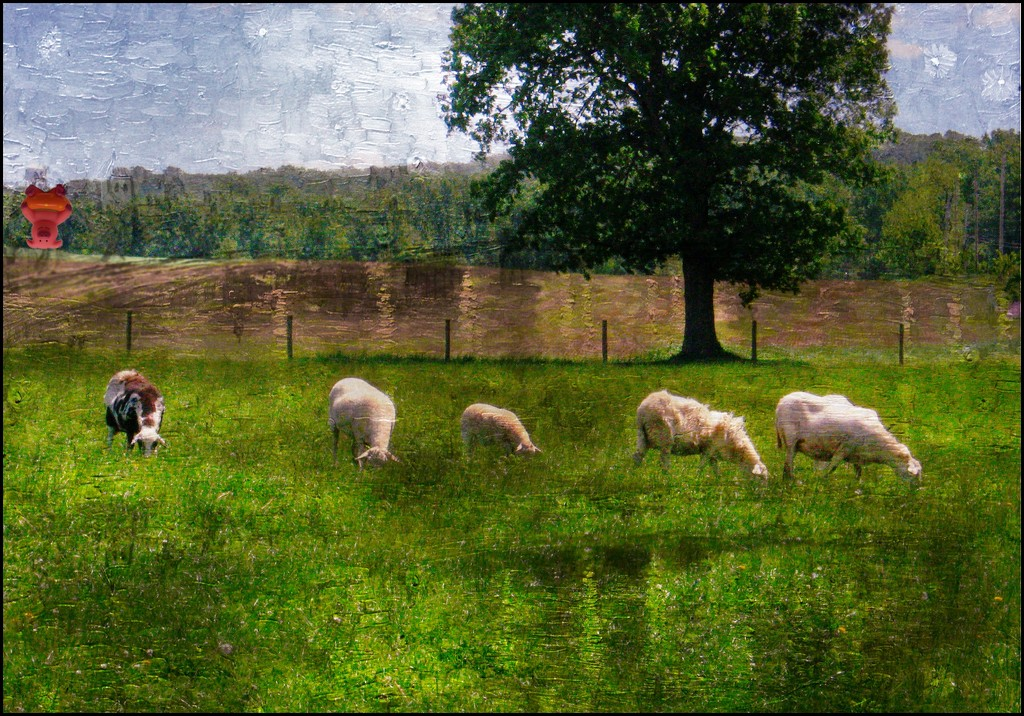 Revealing Piggy 30 by olivetreeann