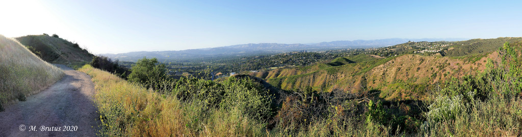 Magnificently Ordinary San Fernando Valley by mbrutus