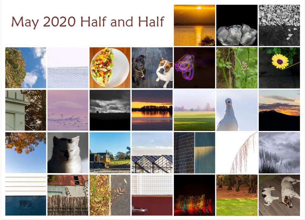May Half and Half Calendar View by nickspicsnz