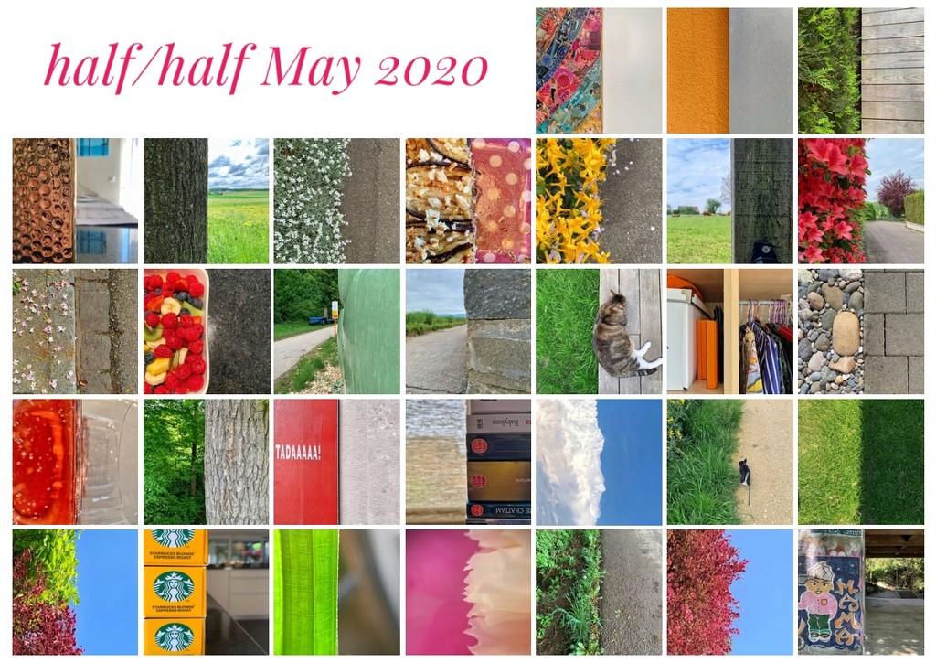 Half/half, May 2020  by cocobella