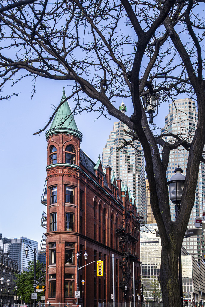 The Gooderham Building by pdulis