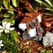 Jordan T & Womby The Baby Wombat ~