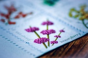 31st May 2020 - Berry Stamps