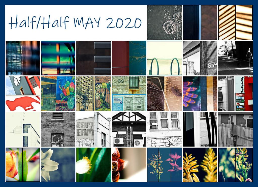 Half-Half 2020 Collage by annied