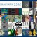 Half-Half 2020 Collage