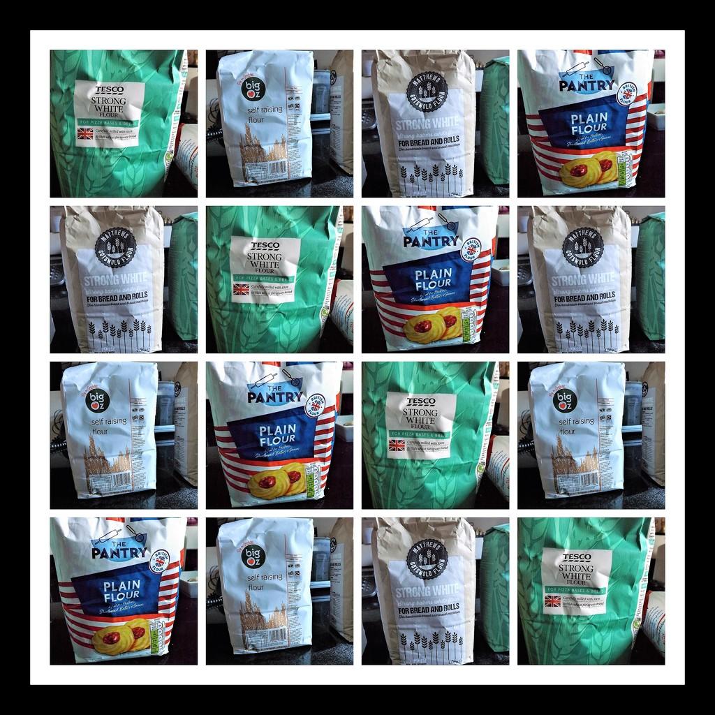 Flour Arranging by ajisaac