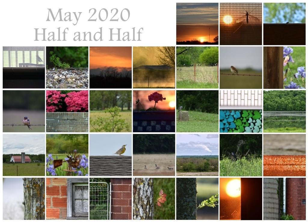 May 2020 Half and Half Calendar by genealogygenie