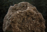 3rd Jun 2020 - Rock as a part of nature