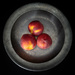 three peaches in a dish