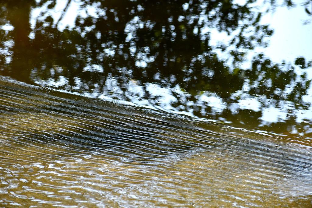 Water Textures by homeschoolmom